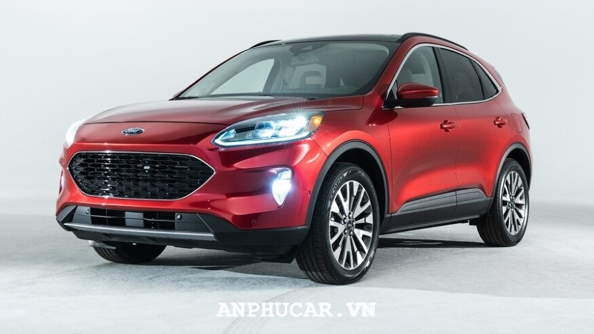 Dau xe Ford Escape SE 2020