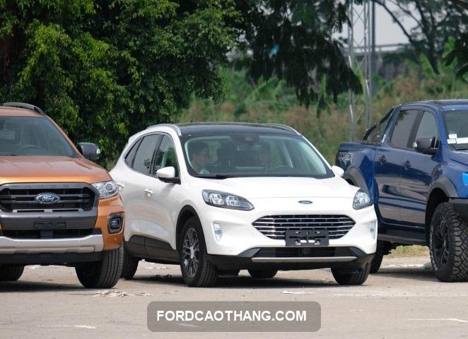 Ford Escape 2021 lo dien