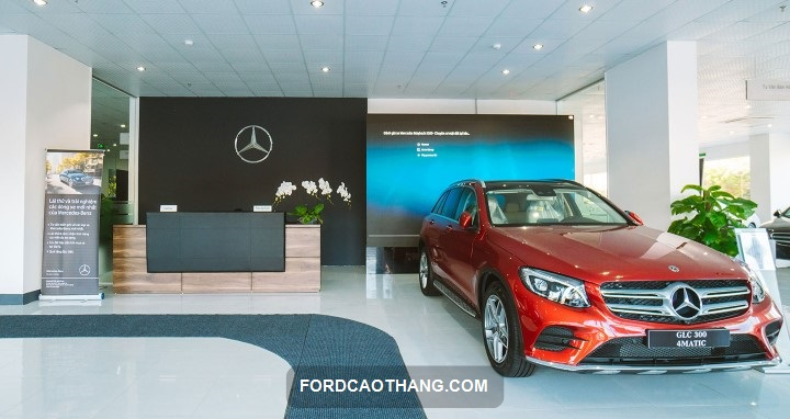 Mercedes Vina Star